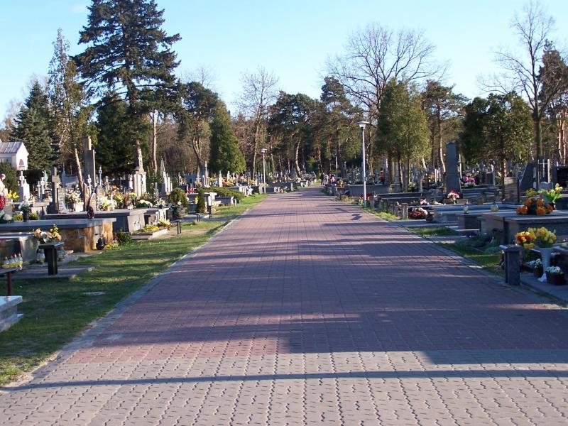 Aleja cmentarna