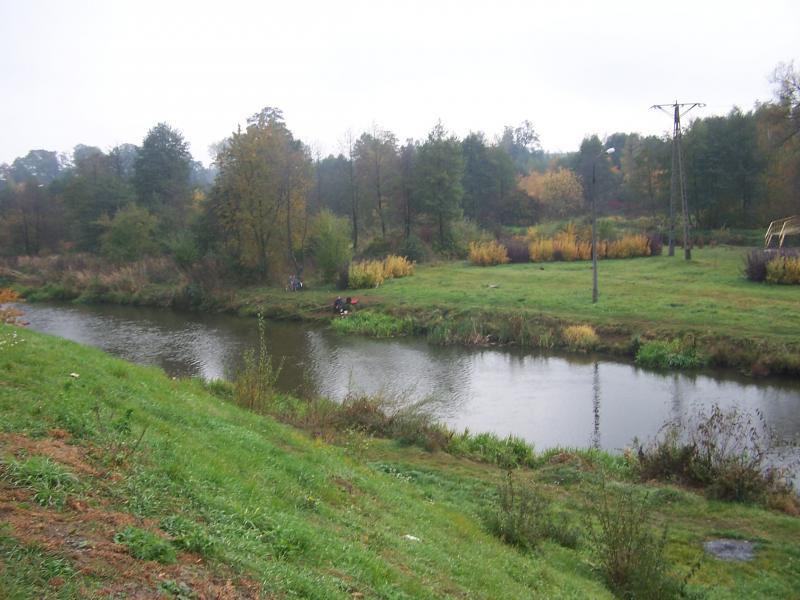 Rzeka Drzewiczka